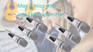 How many mircrophones wok with the FM transmitter? doloremque